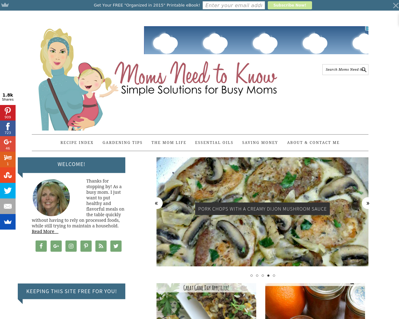 Moms-Need-To-Know-Advertising-Reviews-Pricing