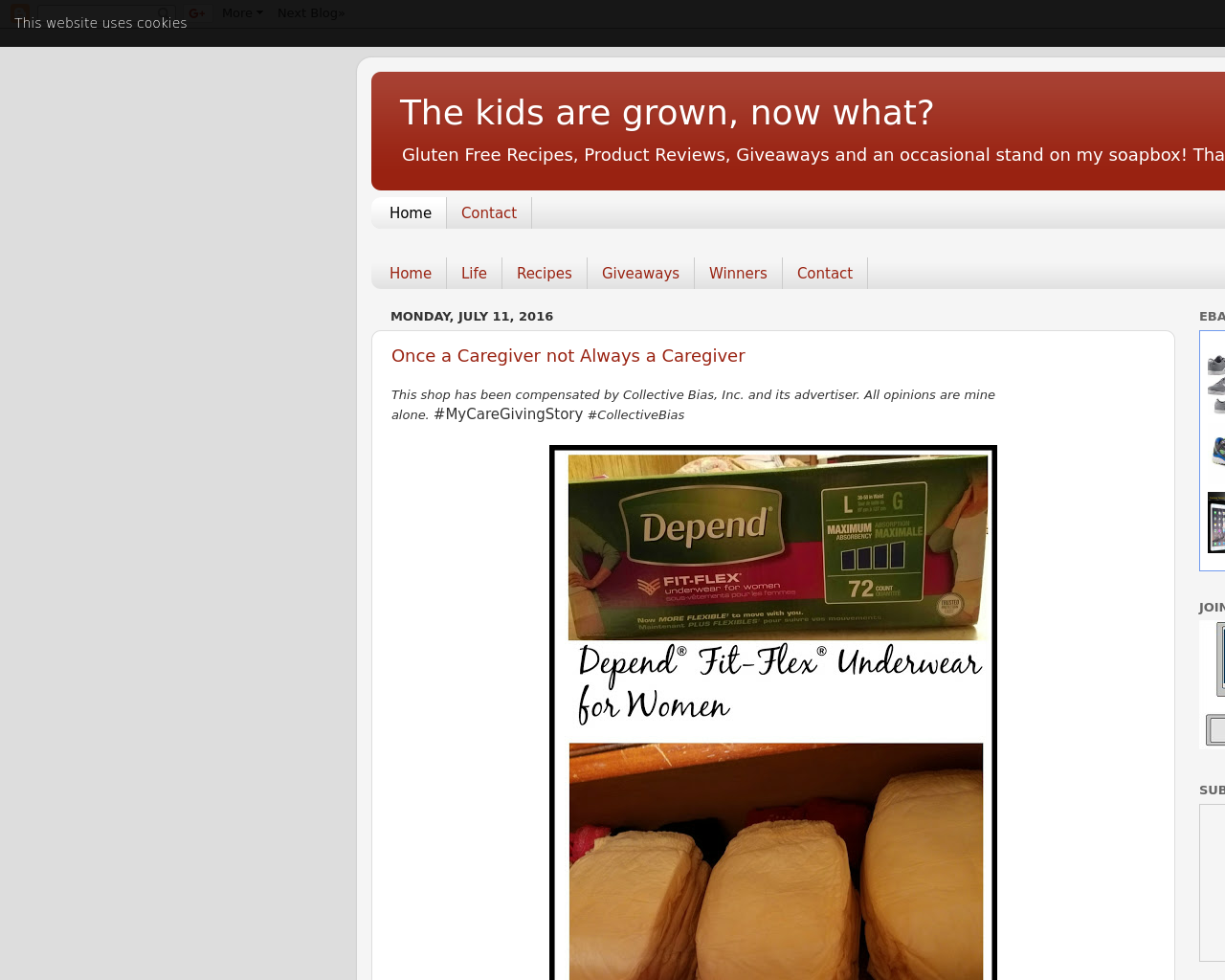 The-Kids-Are-Grown,-Now-What?-Advertising-Reviews-Pricing