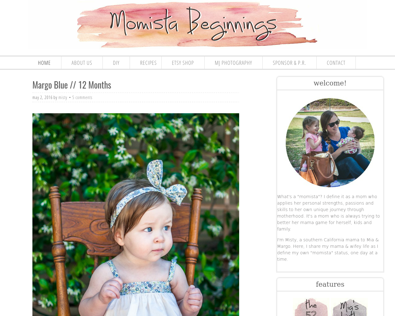 Momista-Beginnings-Advertising-Reviews-Pricing
