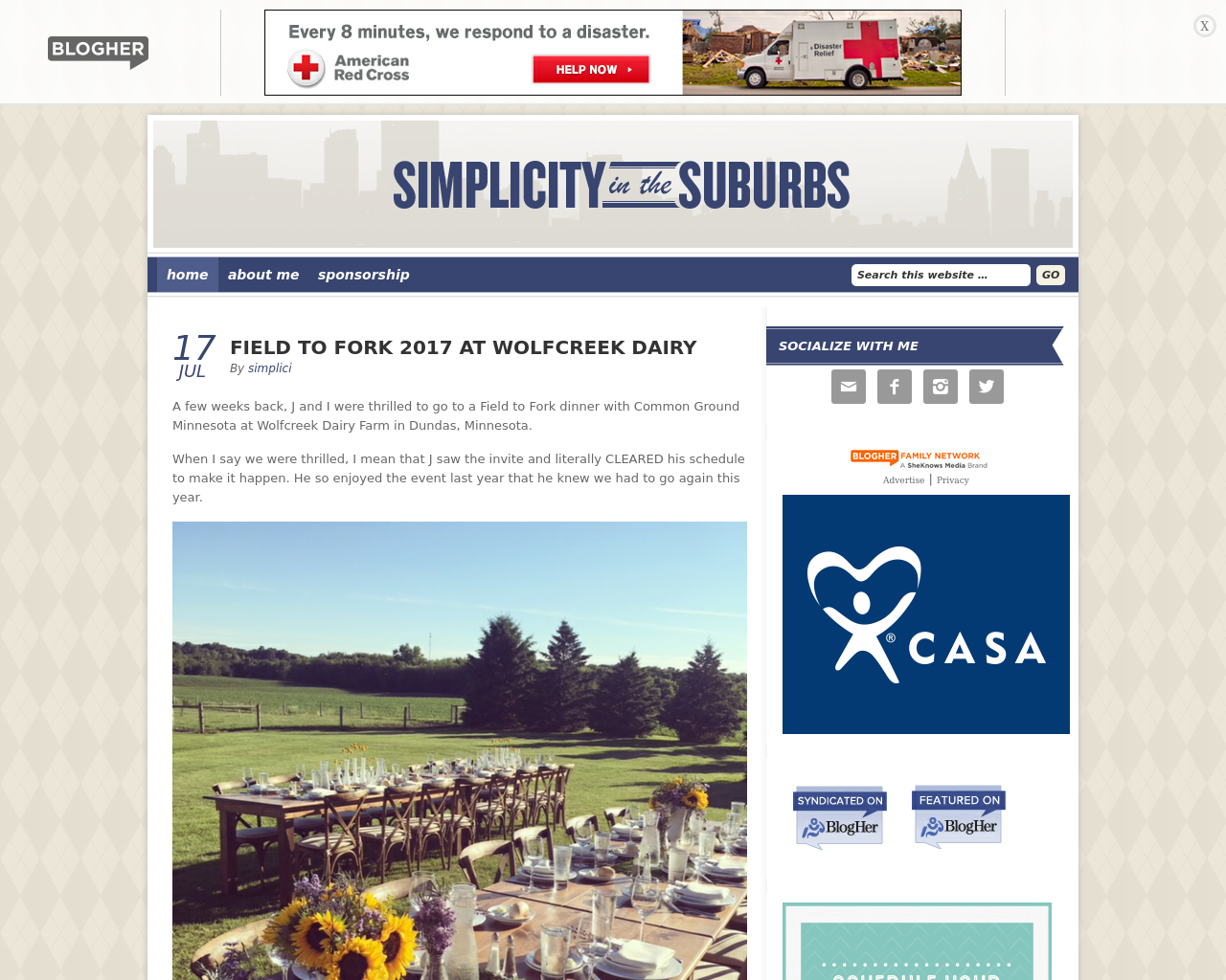 Simplicity-in-the-Suburbs-Advertising-Reviews-Pricing