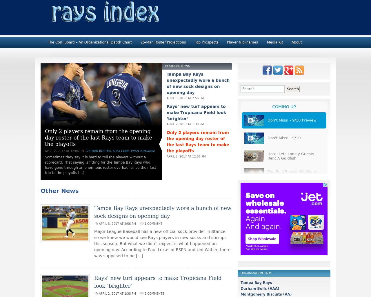 Raysindex.com-Advertising-Reviews-Pricing
