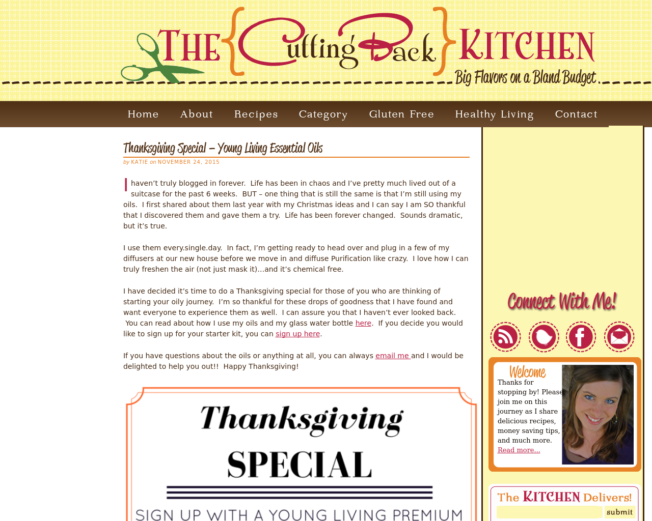 The-Cutting-Back-Kitchen-Advertising-Reviews-Pricing