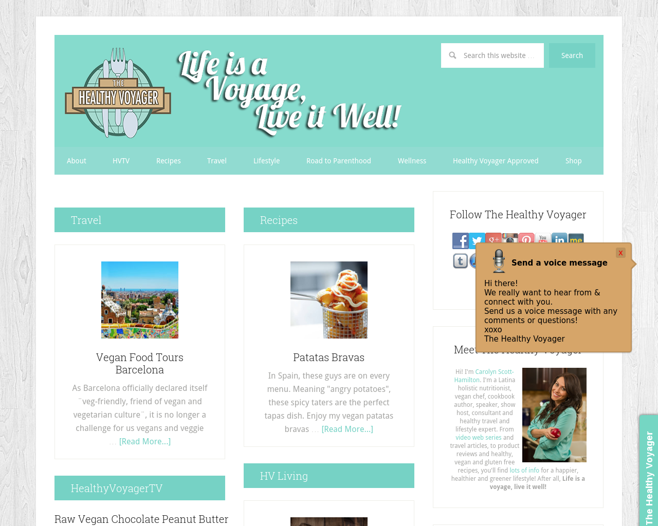 Healthy-Voyager-Advertising-Reviews-Pricing