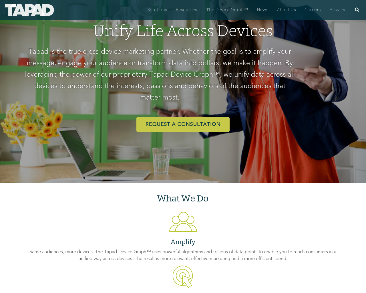Tapad-Advertising-Reviews-Pricing