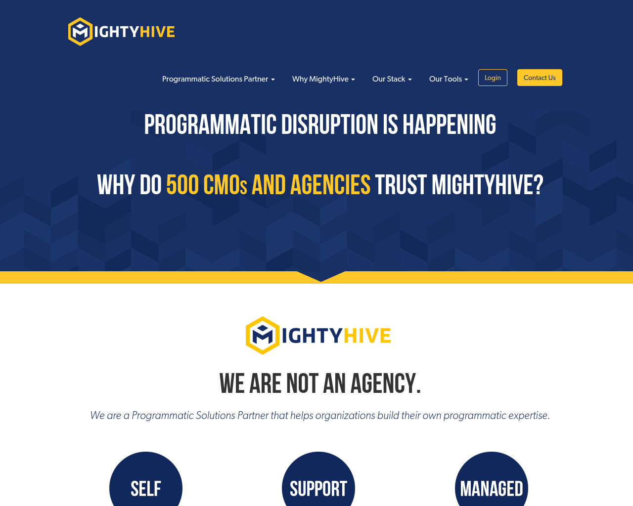 MightyHive-Advertising-Reviews-Pricing