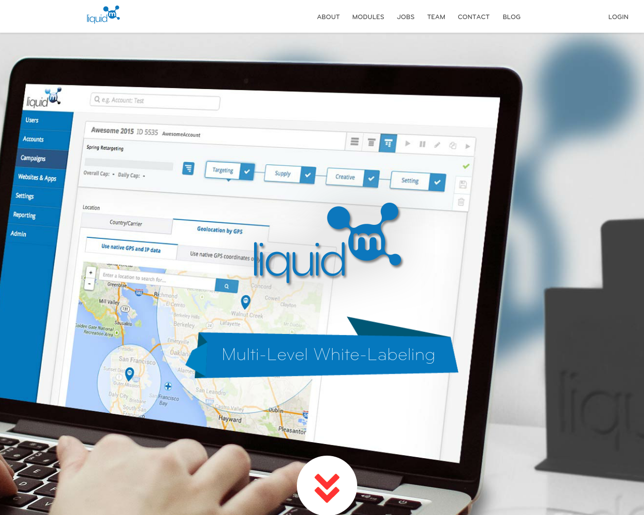 LiquidM-Advertising-Reviews-Pricing