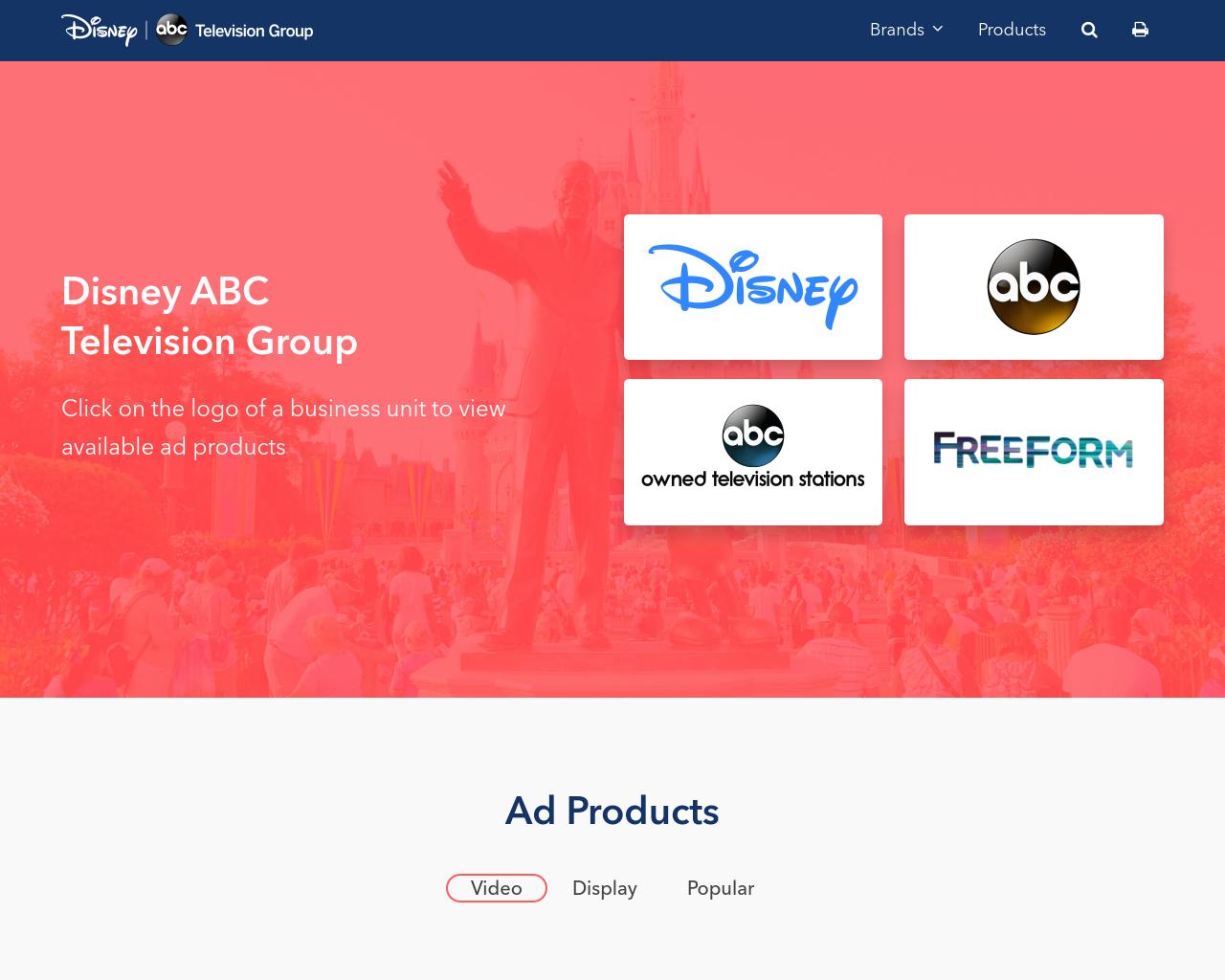 Disney-Interactive-Media-Advertising-Reviews-Pricing