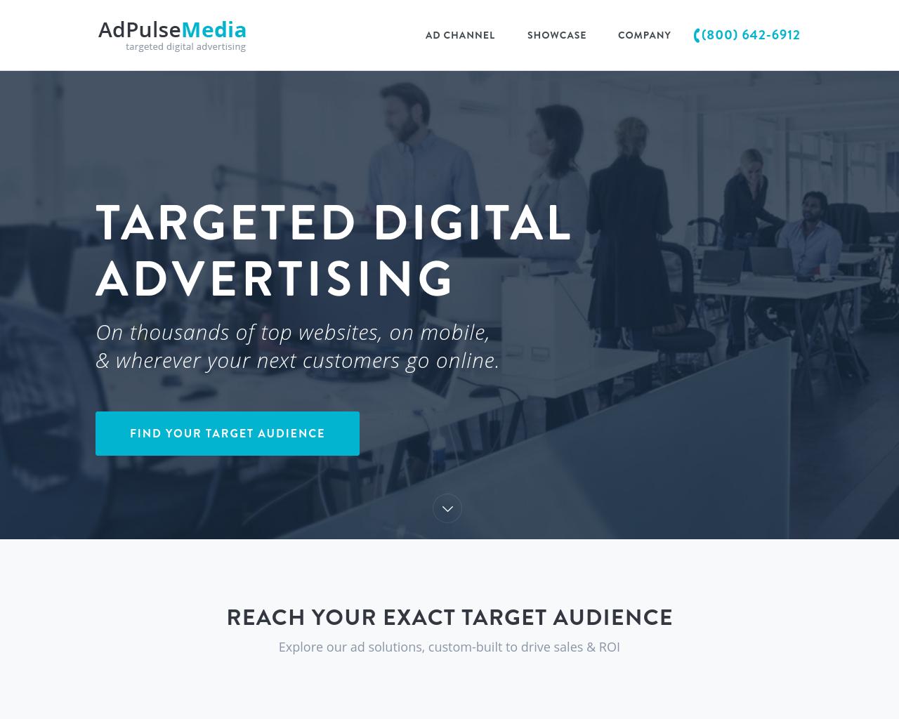 Adpulse-Media-Advertising-Reviews-Pricing