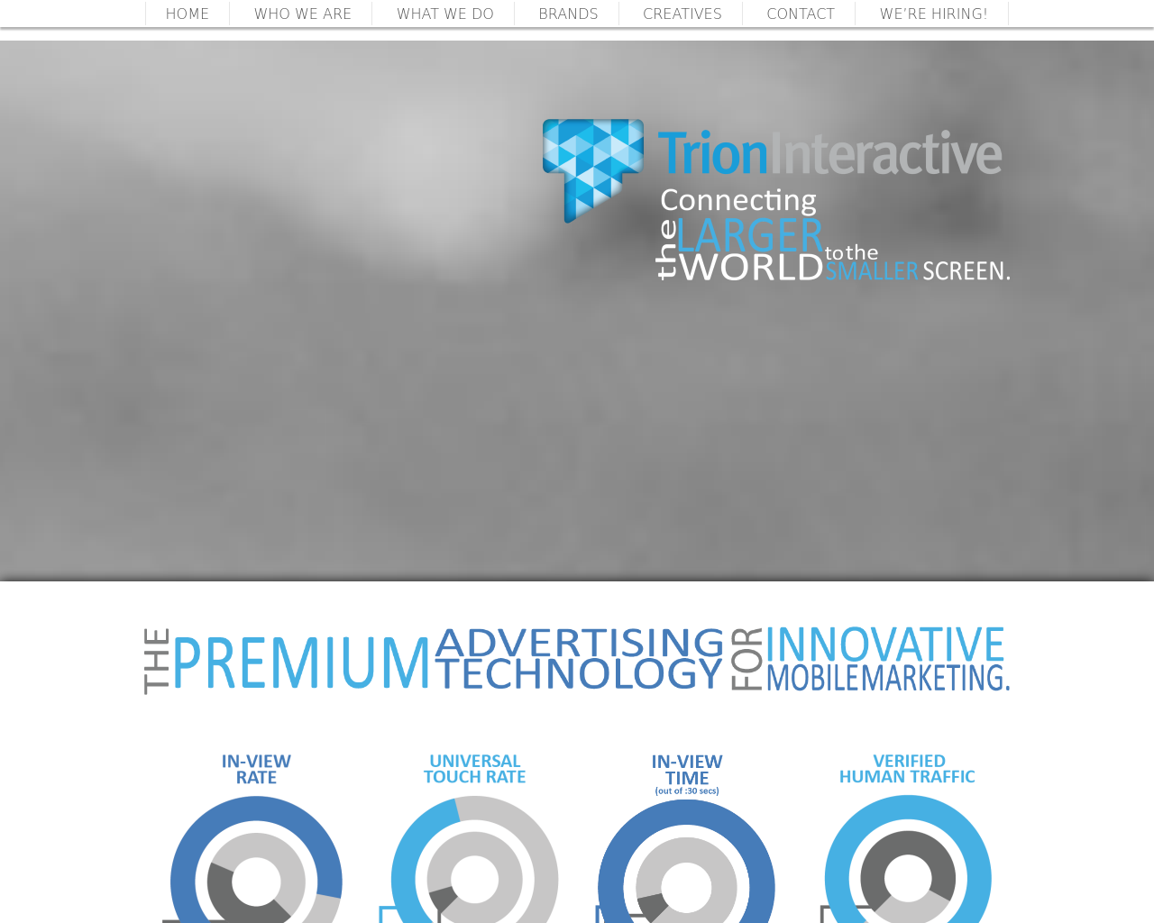 Trion-Interactive-Advertising-Reviews-Pricing