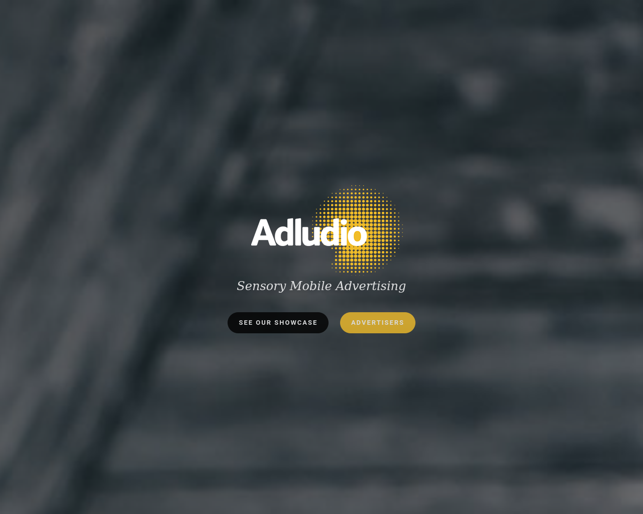 Adludio-Advertising-Reviews-Pricing