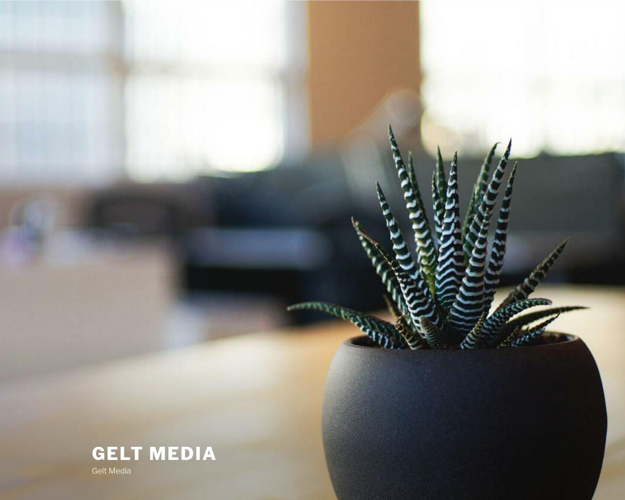 GeltMedia-Advertising-Reviews-Pricing