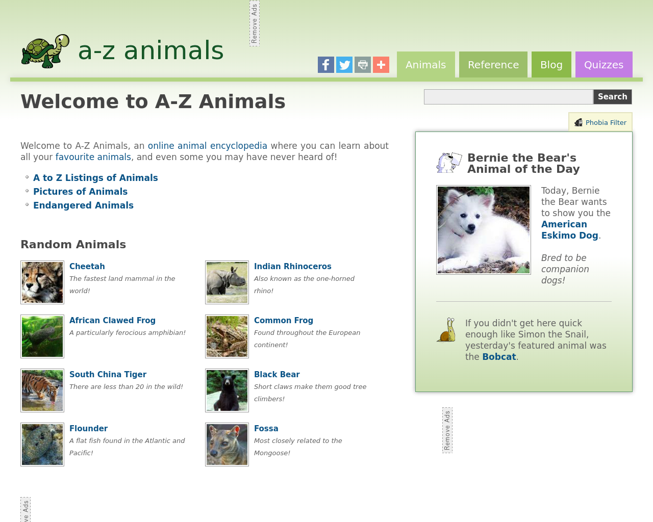 A-Z-Animals-Advertising-Reviews-Pricing