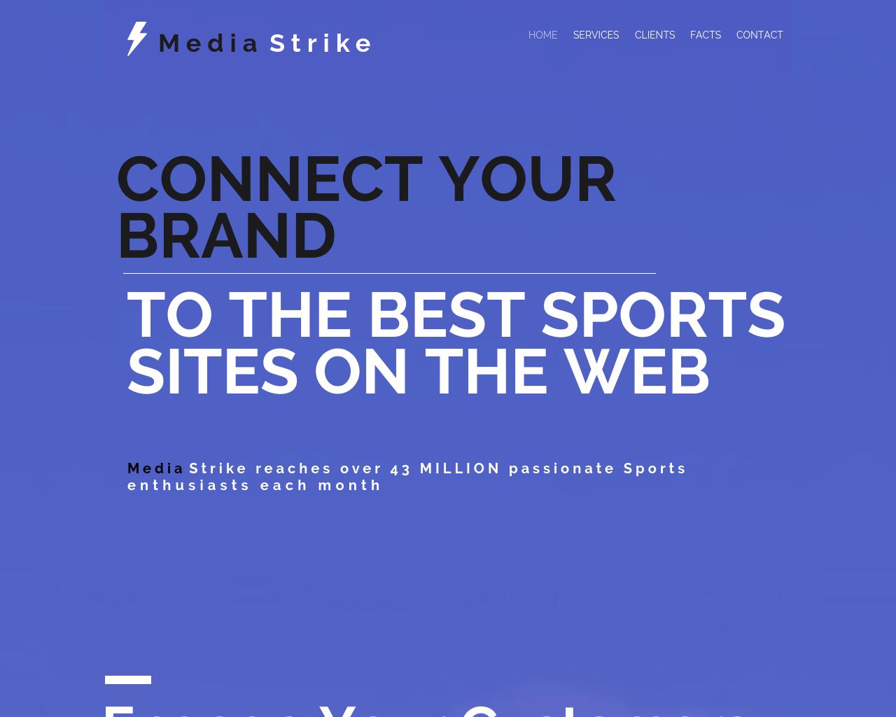 Media-Strike-Advertising-Reviews-Pricing