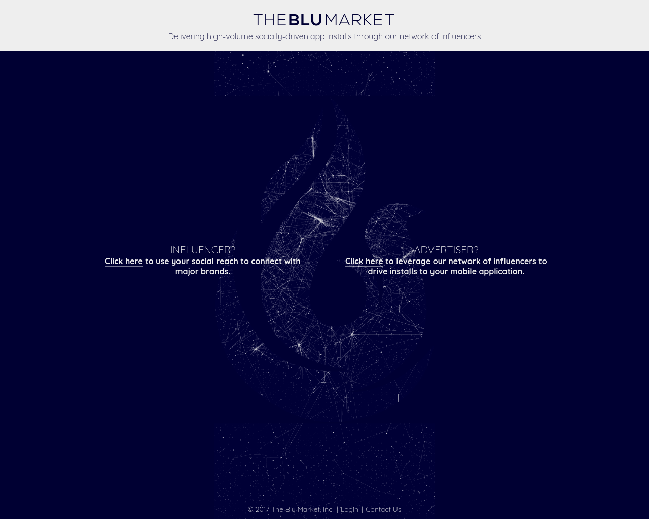 THE-BLUE-MARKET-Advertising-Reviews-Pricing