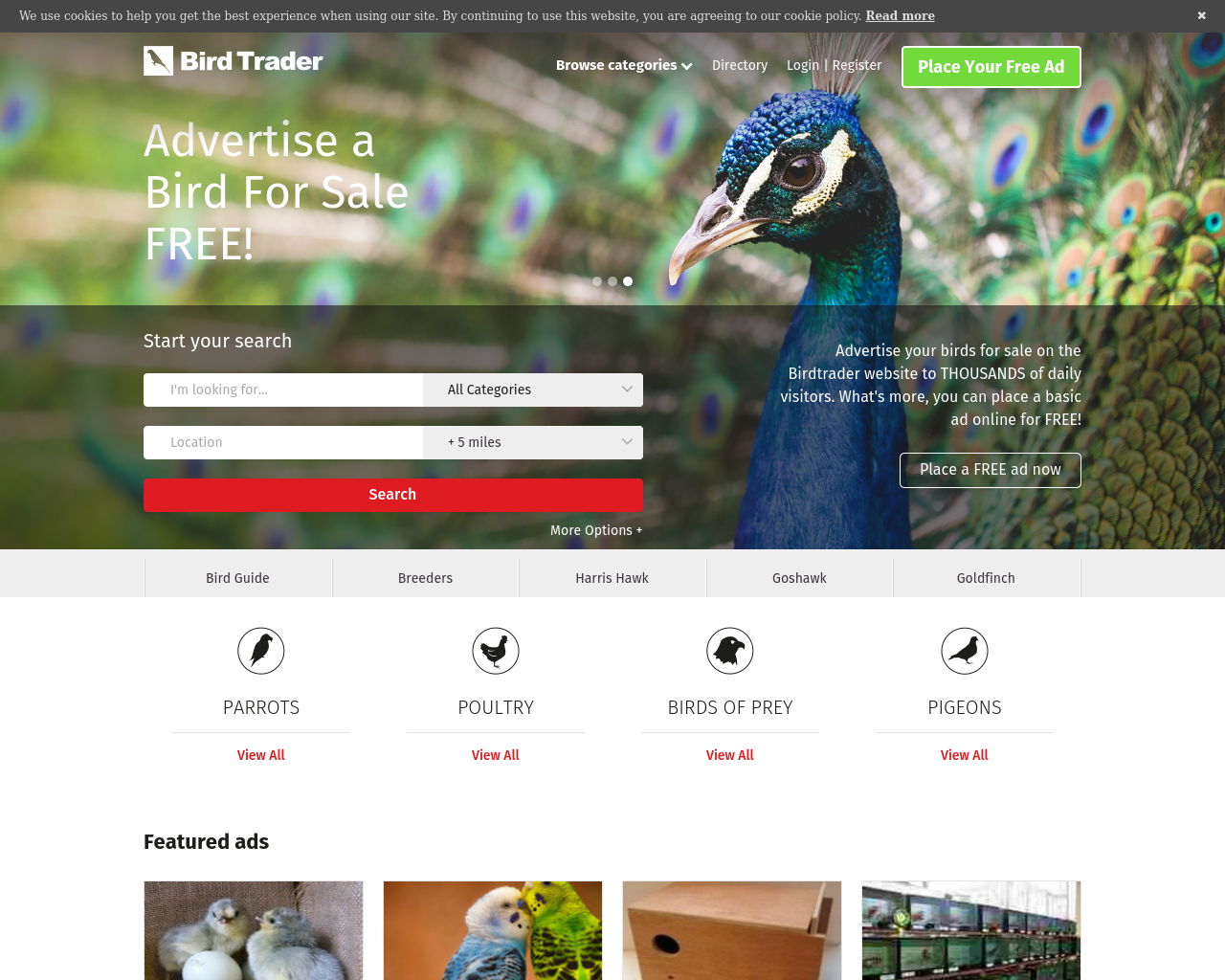 Birdtrader-Advertising-Reviews-Pricing