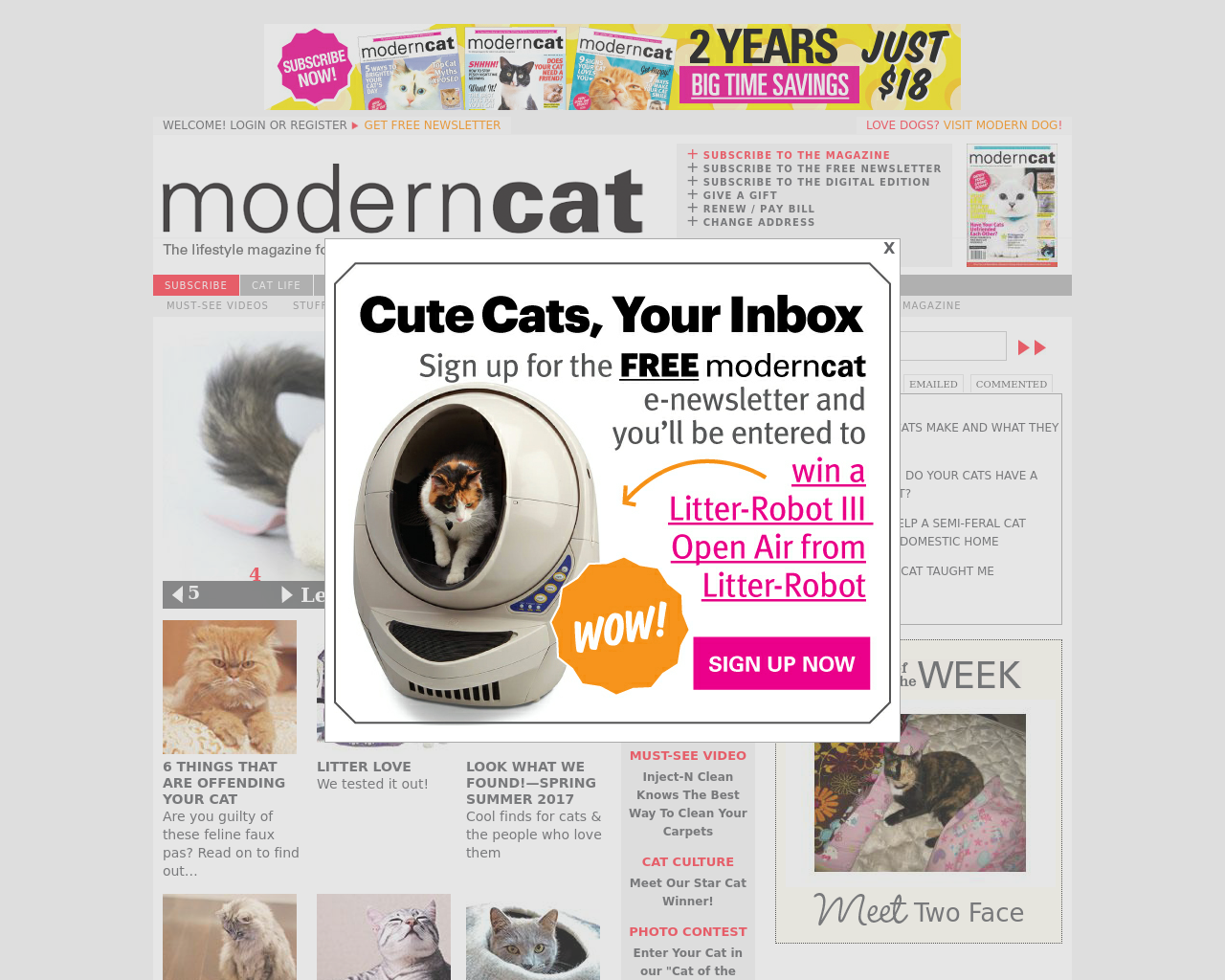Modern-Cat-Advertising-Reviews-Pricing