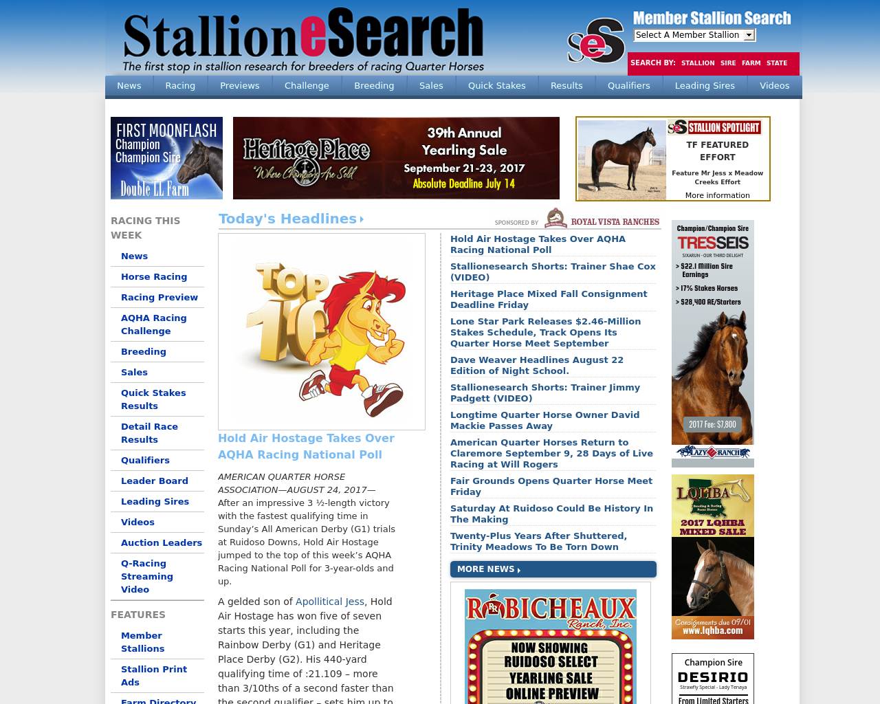 StallioneSearch.com-Advertising-Reviews-Pricing
