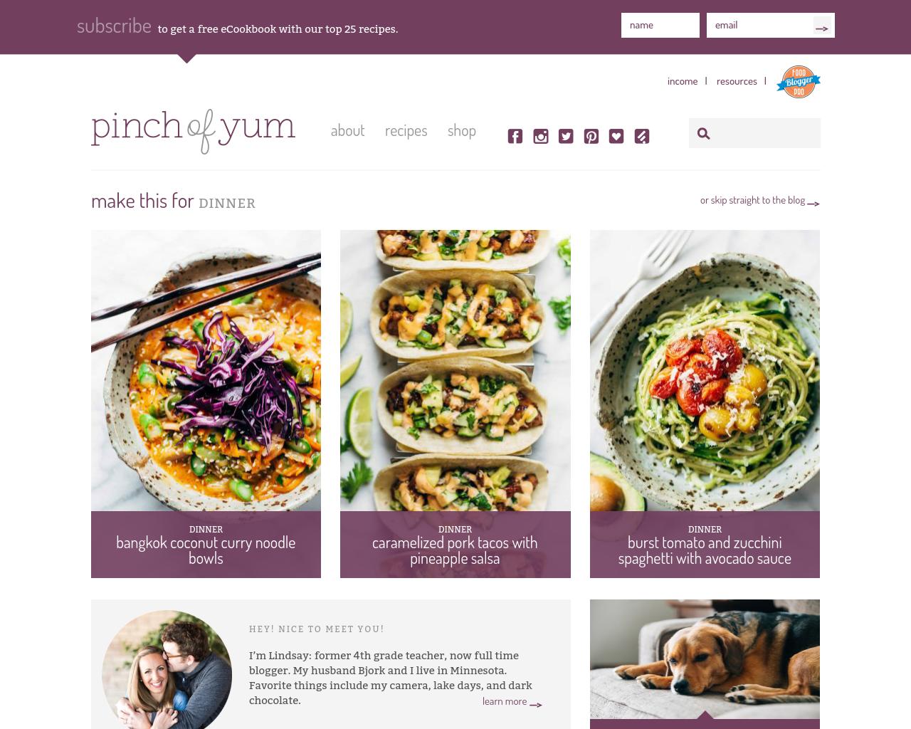 Pinch-Of-Yum-Advertising-Reviews-Pricing