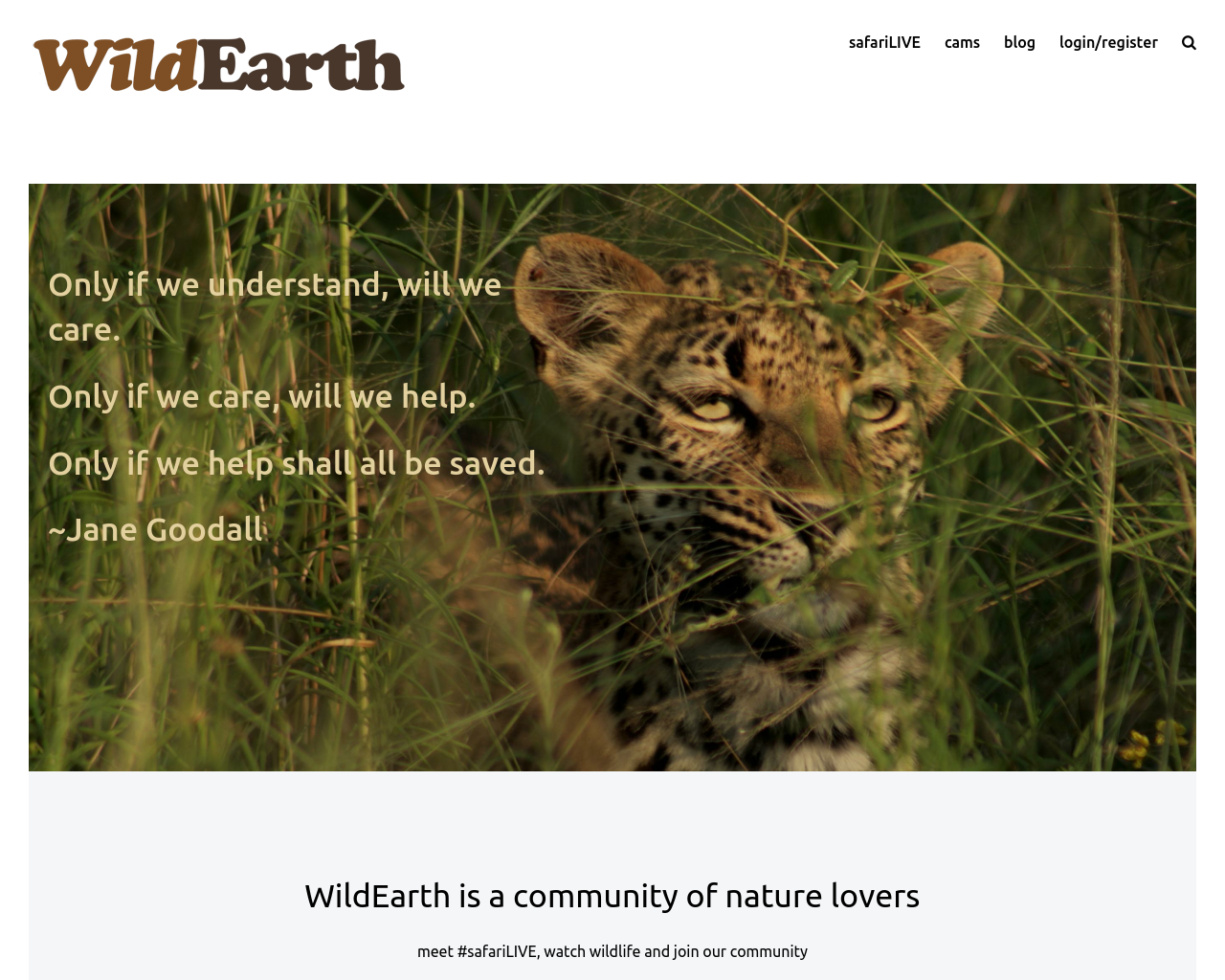 WildEarth-Advertising-Reviews-Pricing