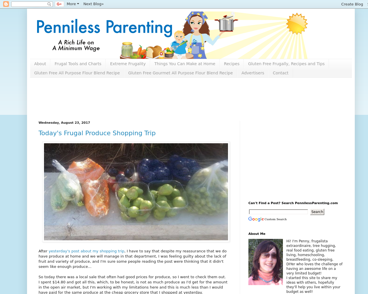 Penniless-Parenting-Advertising-Reviews-Pricing
