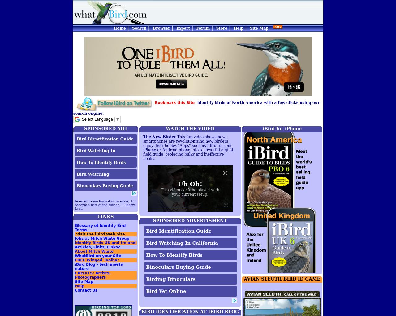 Whatbird.com-Advertising-Reviews-Pricing