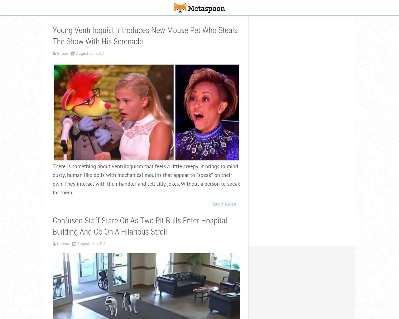 MetaSpoon-Advertising-Reviews-Pricing