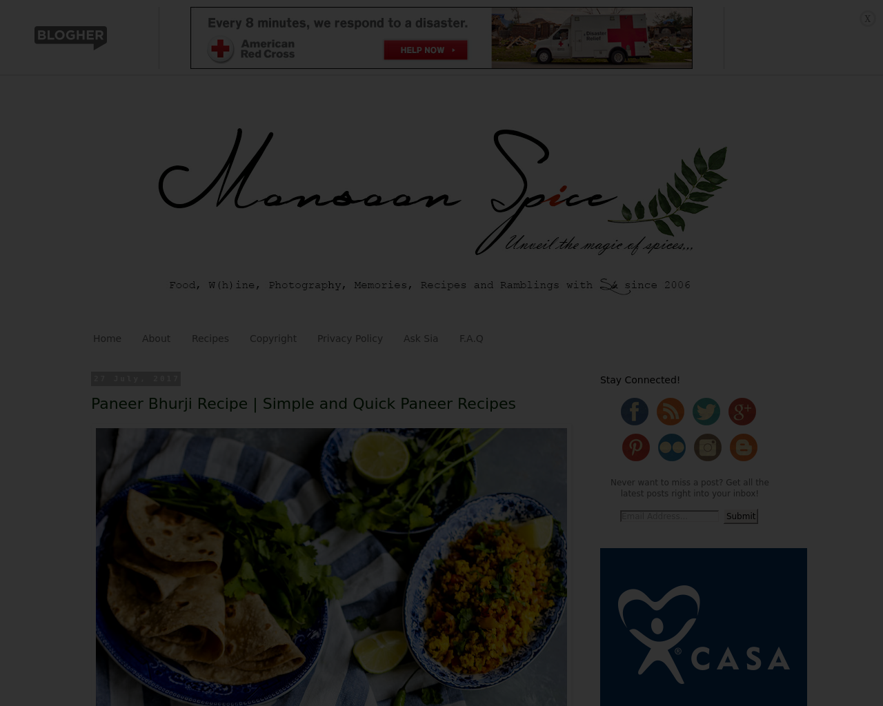 Monsoon-Spice-Advertising-Reviews-Pricing