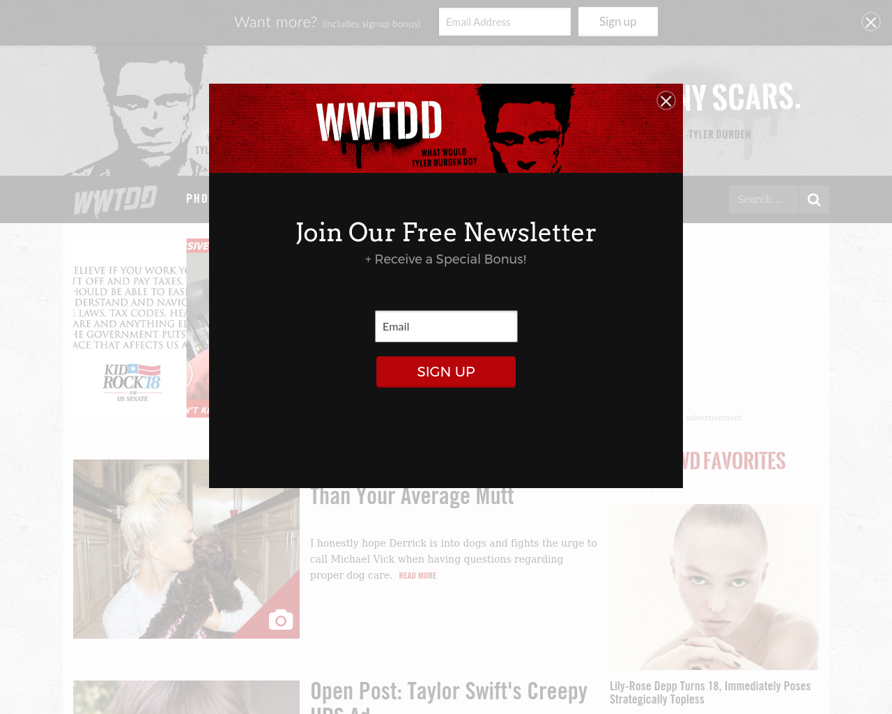 WWTDD.com-Advertising-Reviews-Pricing