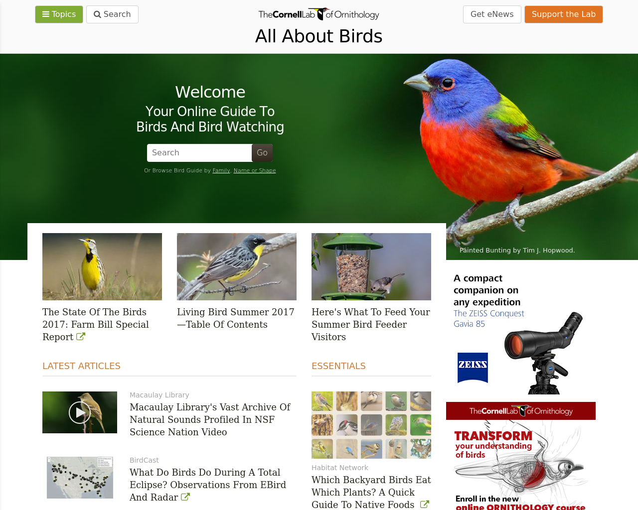 All-About-Birds-Advertising-Reviews-Pricing