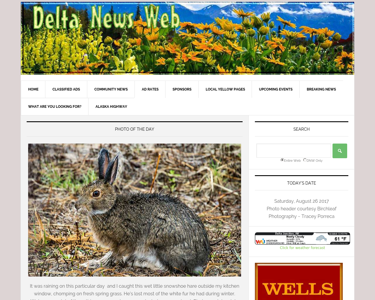 Delta-News-Web-Advertising-Reviews-Pricing