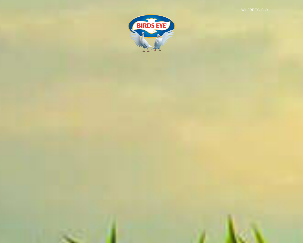 Birds-Eye-Advertising-Reviews-Pricing