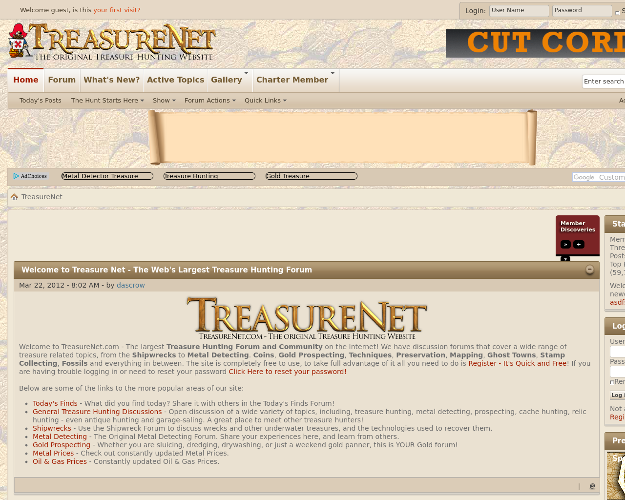 TreasureNet-Advertising-Reviews-Pricing