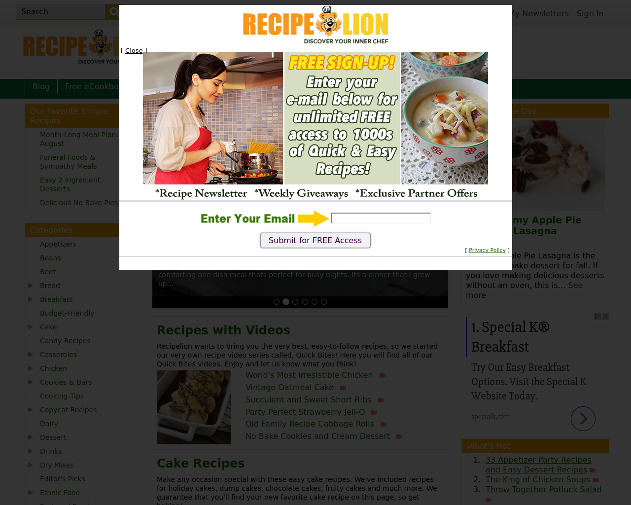 Recipe-Lion-Advertising-Reviews-Pricing