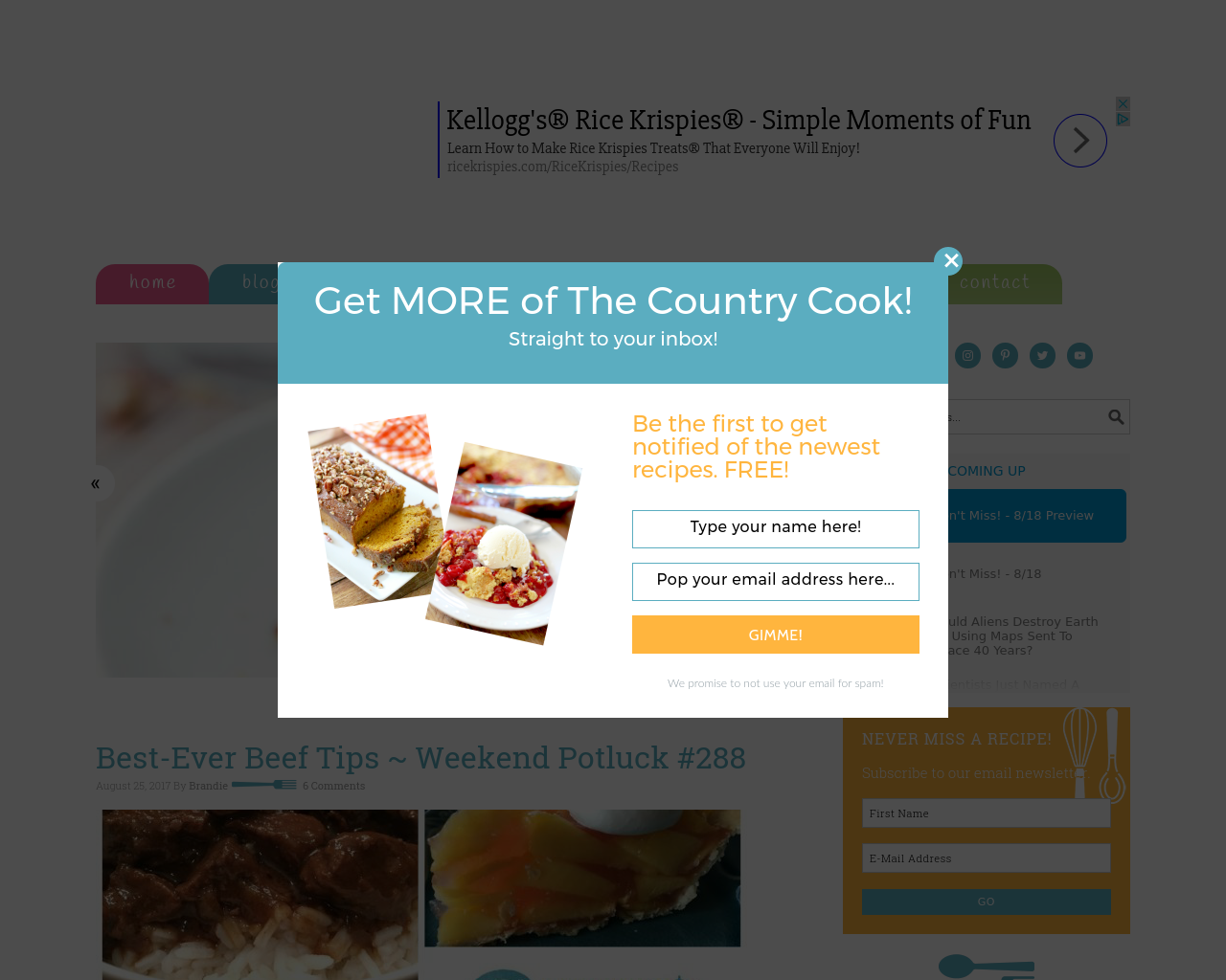 The-Country-Cook-Advertising-Reviews-Pricing