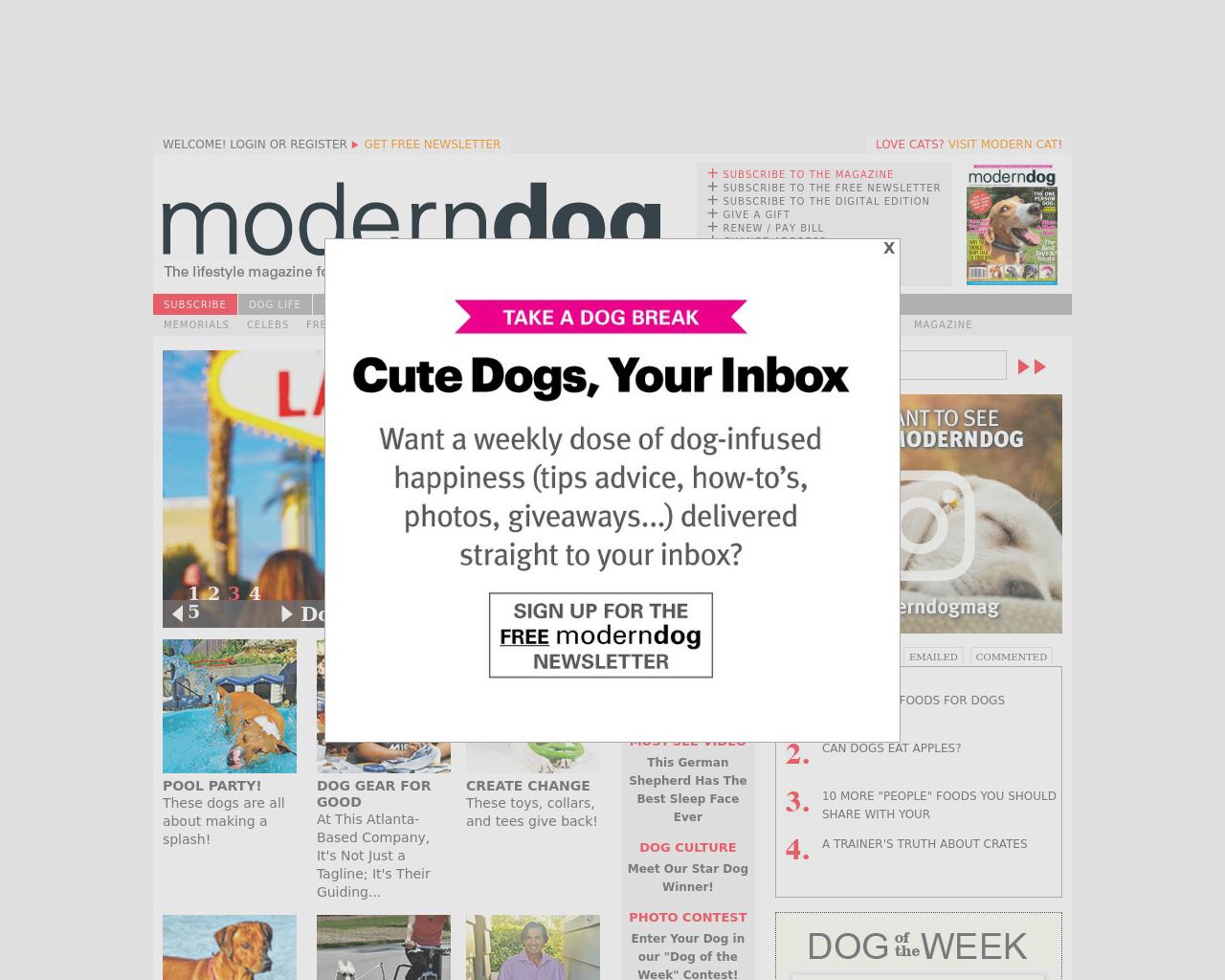 Moderndog-Advertising-Reviews-Pricing