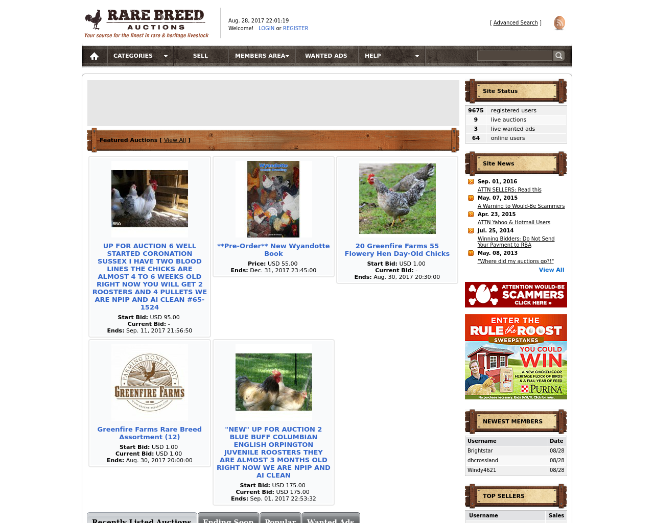 Rare-Breed-Auctions-Advertising-Reviews-Pricing
