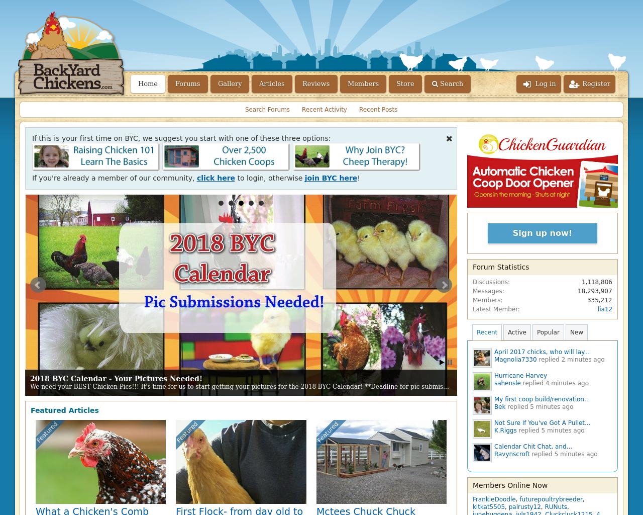BackYard-Chickens-Advertising-Reviews-Pricing