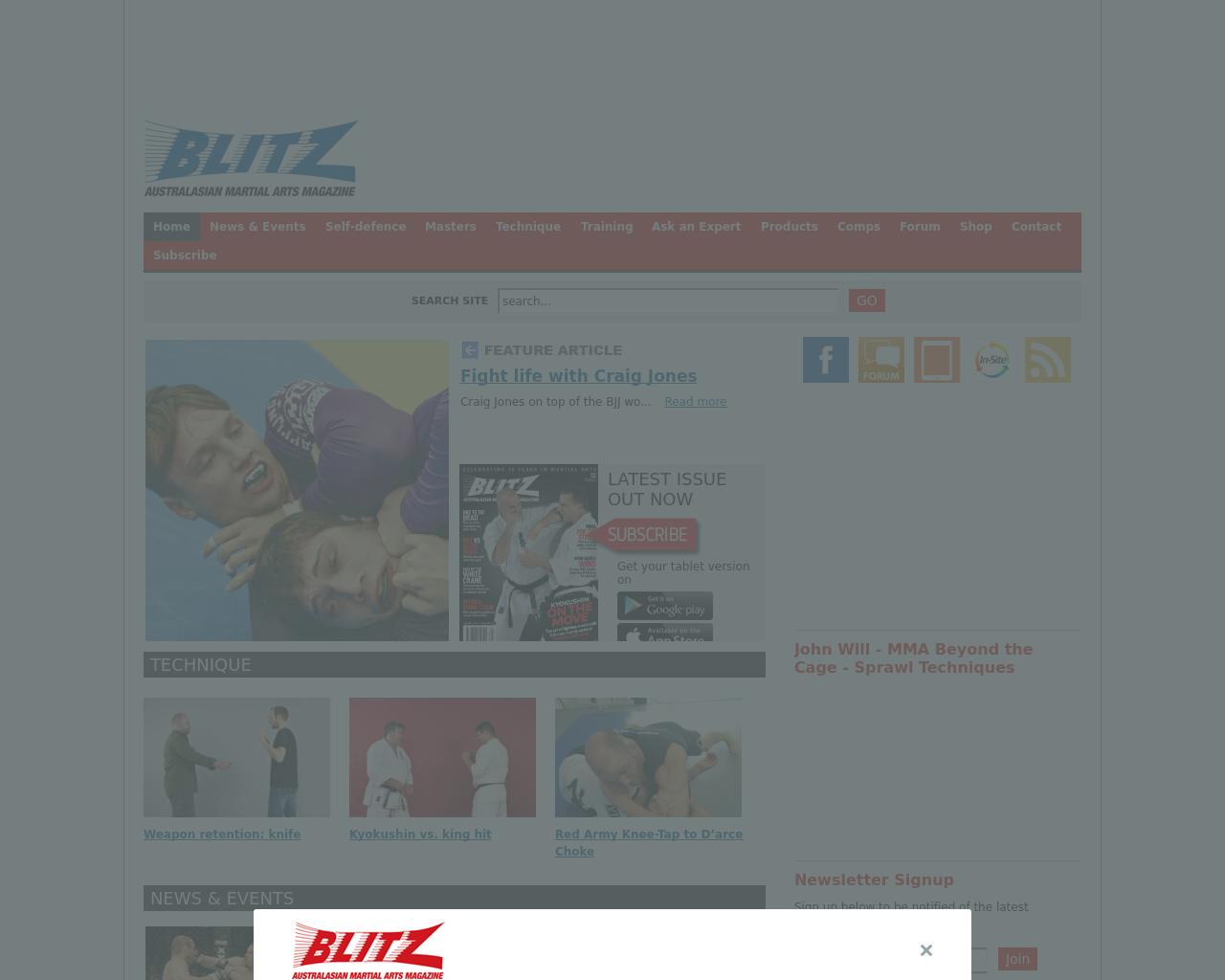 BLITZ-Advertising-Reviews-Pricing