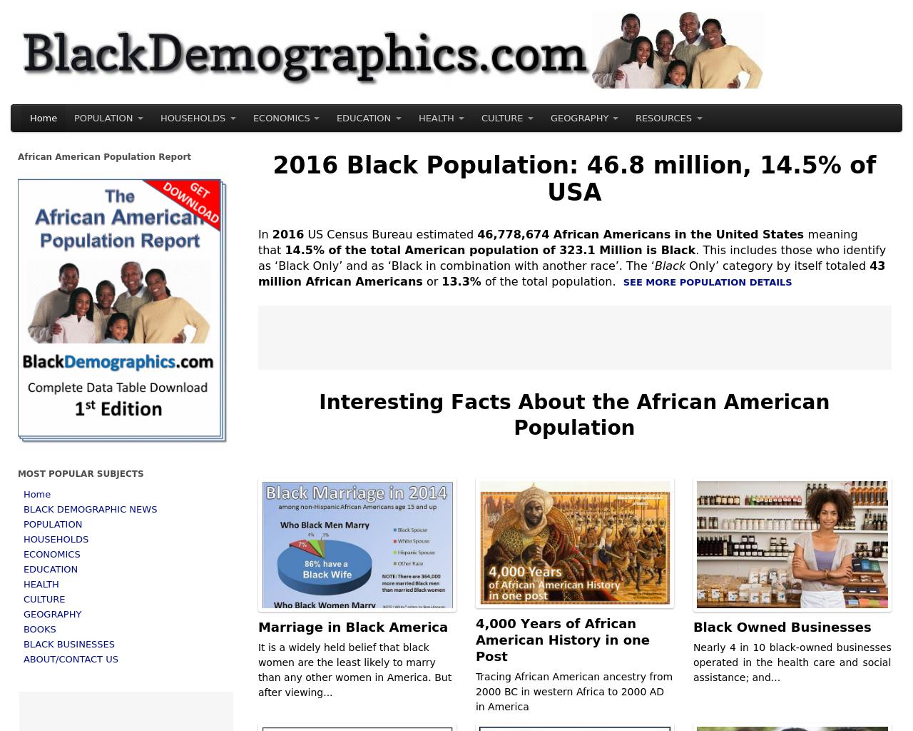 BlackDemographics.com-Advertising-Reviews-Pricing