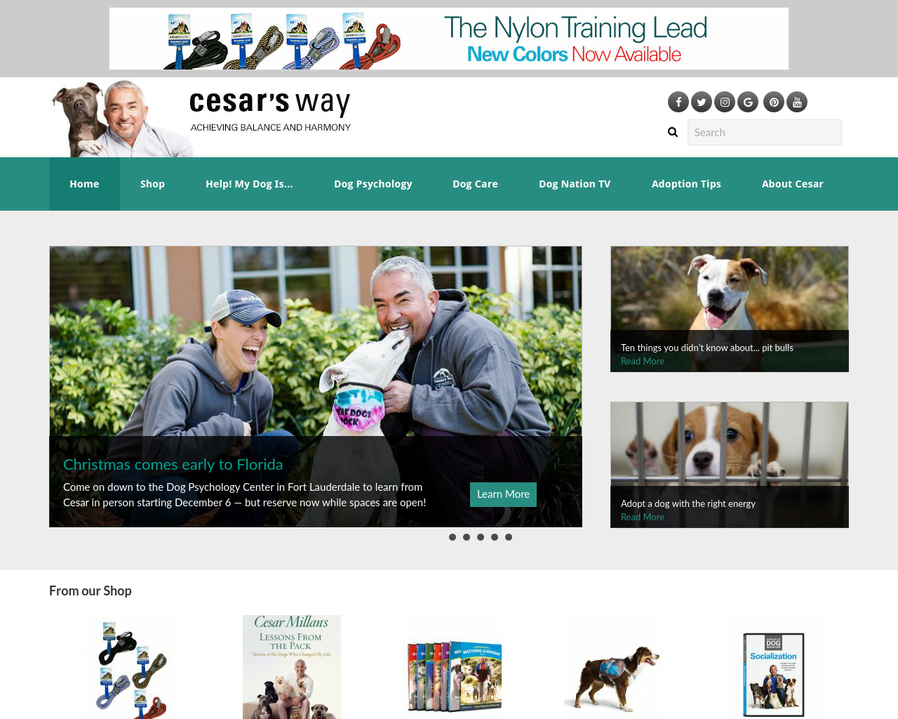 Cesar-Millan-Inc.-Advertising-Reviews-Pricing