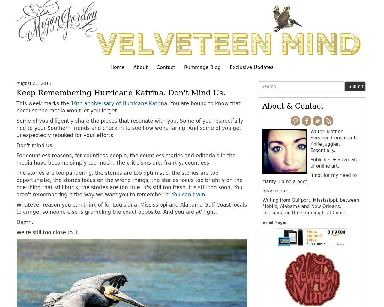 Velveteen-Mind-Advertising-Reviews-Pricing