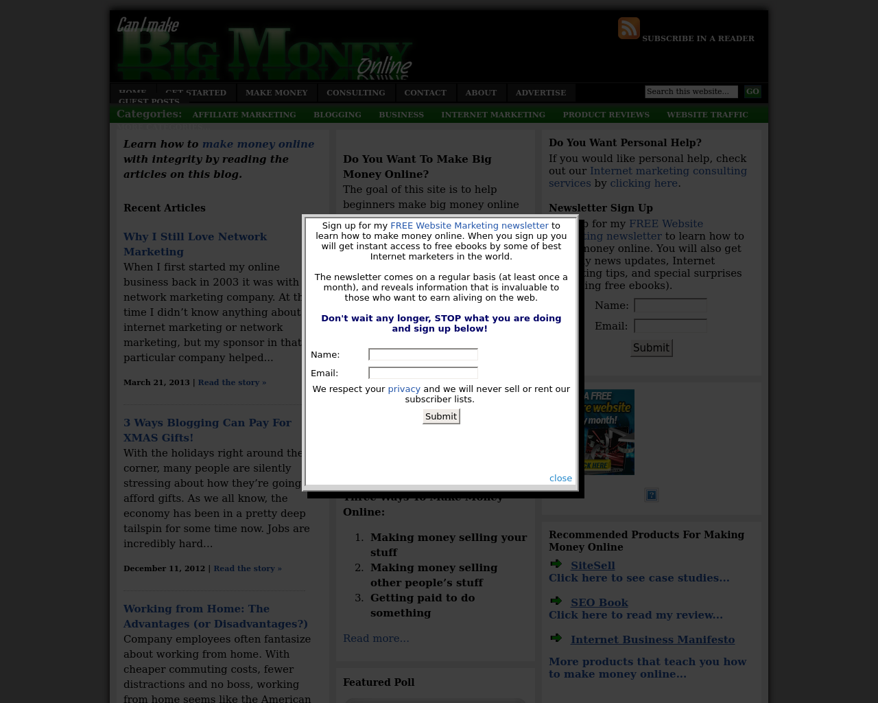 Can-I-Make-Big-Money-Online-Advertising-Reviews-Pricing
