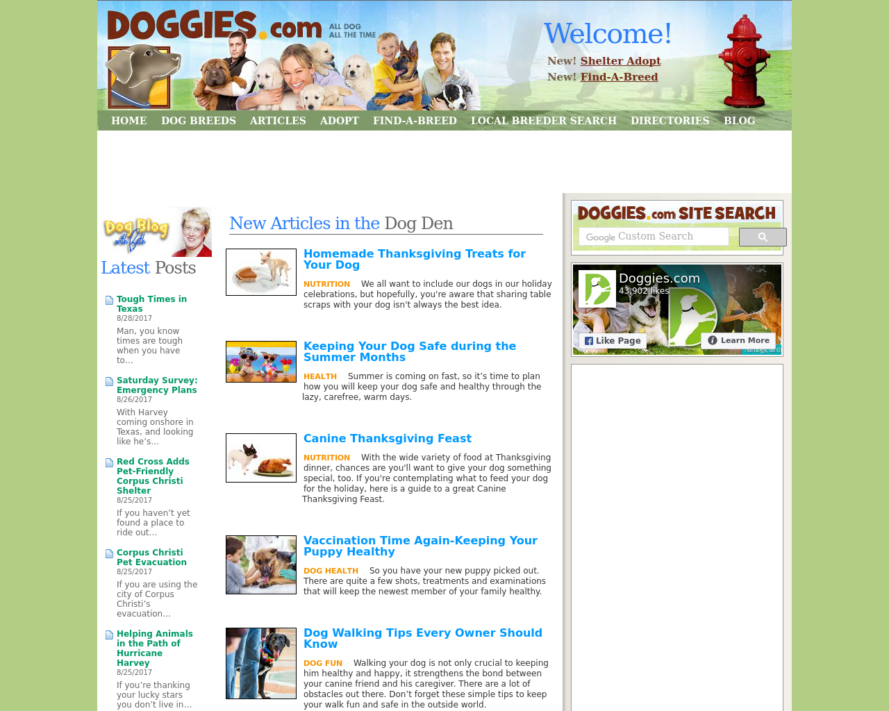 Doggies-Advertising-Reviews-Pricing